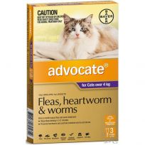 Advocate Large Cat 4kg+ Purple 3 Pack