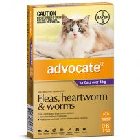 Advocate Large Cat 4kg+ (Purple) 6 Pack
