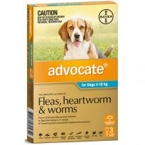 Advocate Medium Dog 4 - 10kg Aqua 3 Pack