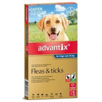 Advantix Extra Large Dog 25kg 6 Pack
