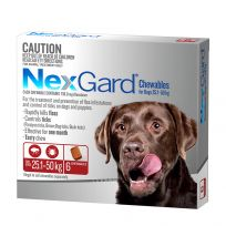 NexGard Large Dog Chewables 6 Pack