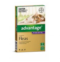 Advantage Large Cat 4kg (Purple) 4 Pack