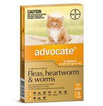 Advocate Small Cat 0 - 4kg (Orange) 6 Pack