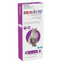 Bravecto Cat Large 6.25kg - 12.5kg Purple 2 Pack