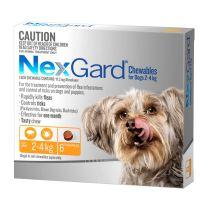 NexGard Very Small Dog Chewables 6 Pack
