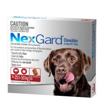 NexGard Large Dog Chewables 6 Pack