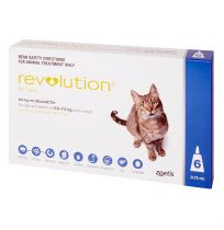 Revolution Cat Blue 6 Pack